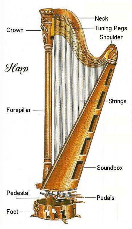 harp-diagram