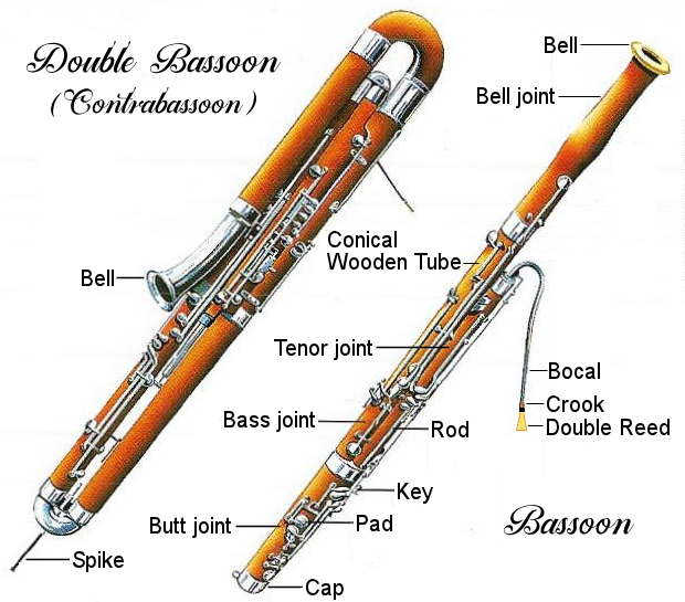 bassoon-diaagram