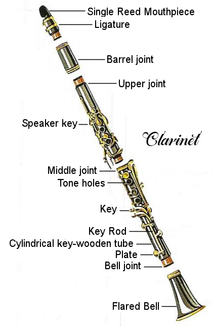 clarinet-diagram