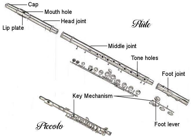 flute-diagram