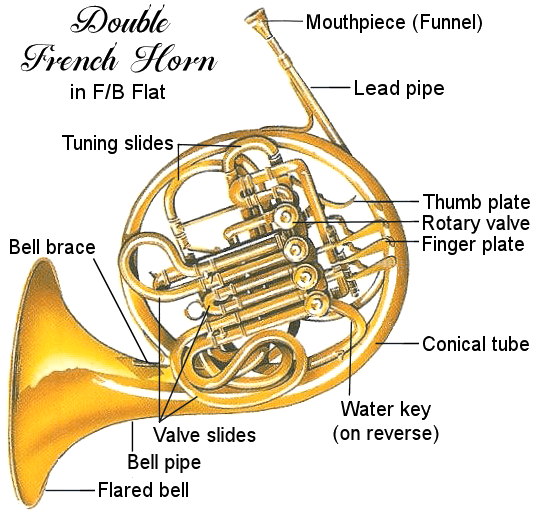 french-horn-diagram