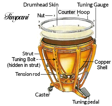 timpani-diagram
